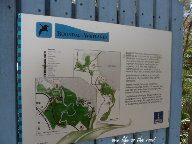 Our visit To Boondall Wetlands