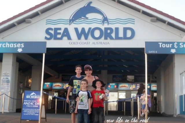 Wordless Wednesday Seaworld GoldCoast