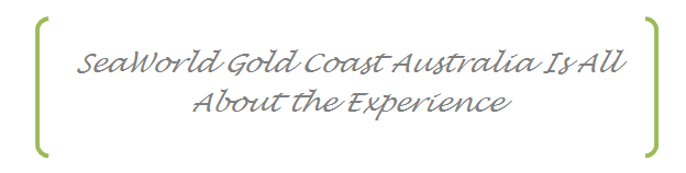 Experience Seaworld