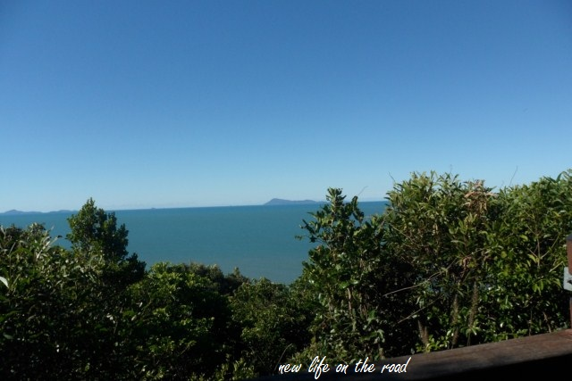 From the Lookouts at Cape Hillsborough