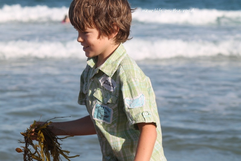 Cameron after Daddy ~ Throwing Seaweed