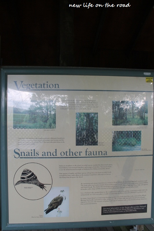 Wildlife Information in the area