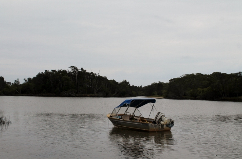 Boat parked at Warrell Creek