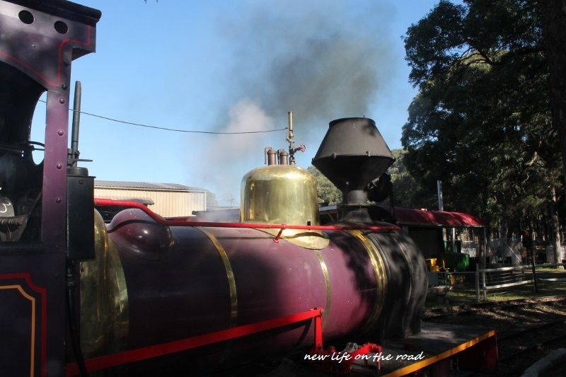 Illawarra Steam Train