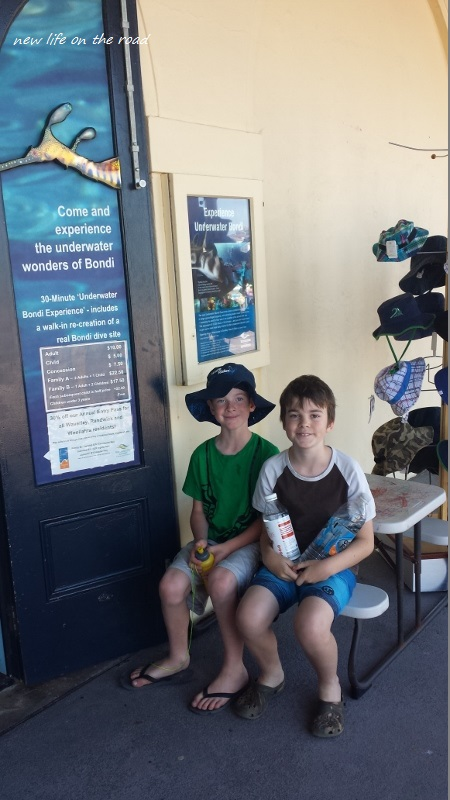 Cameron and Kyle learning about Bondi Beach Marine Life