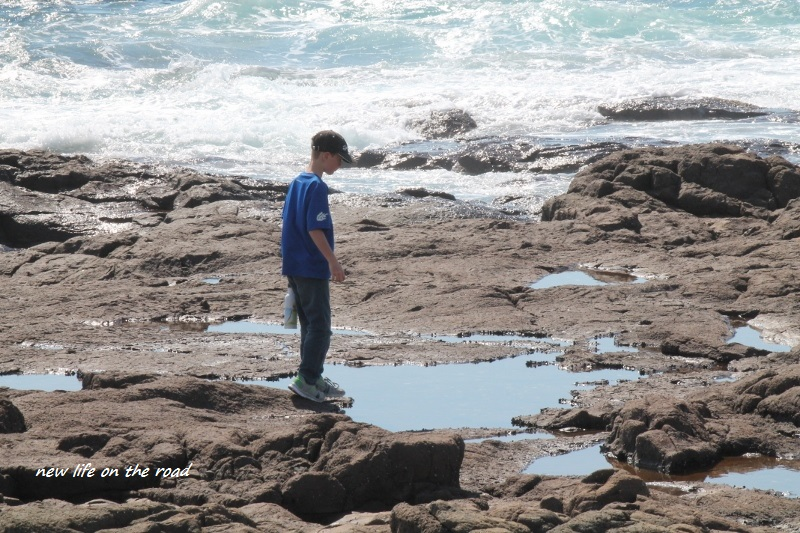 Kyle exploring the rockpools