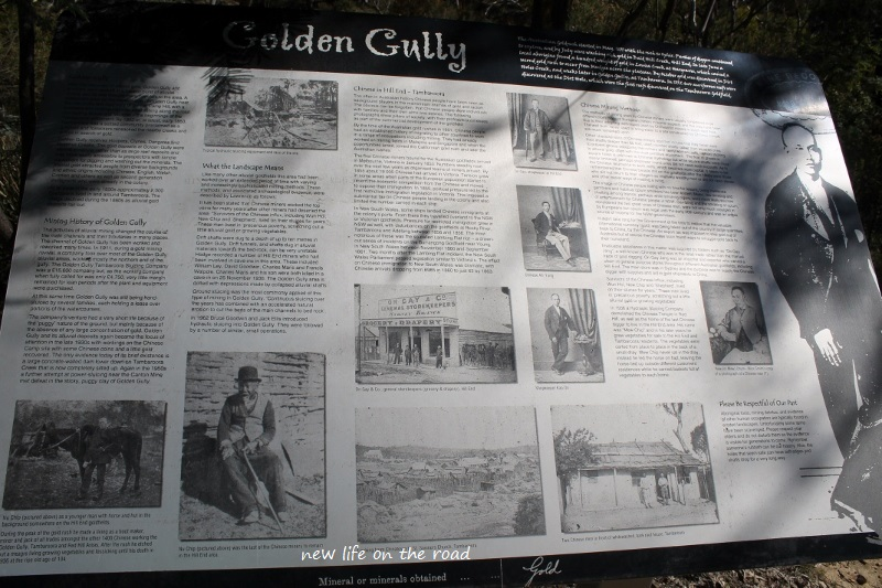 History of Golden Gully
