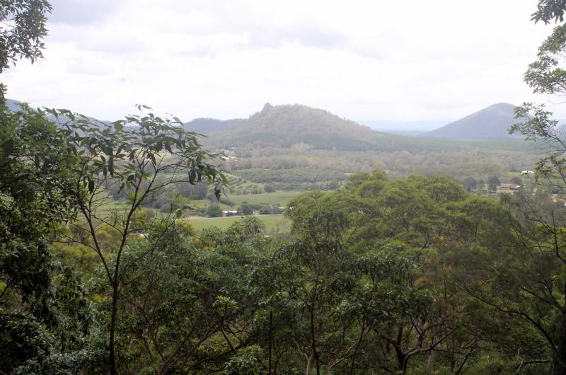 Climbing Mt Ngungun