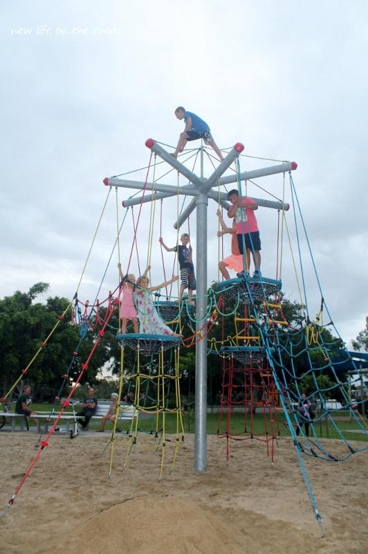 Can climb up high