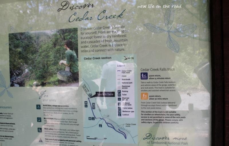 Discover Cedar Creek