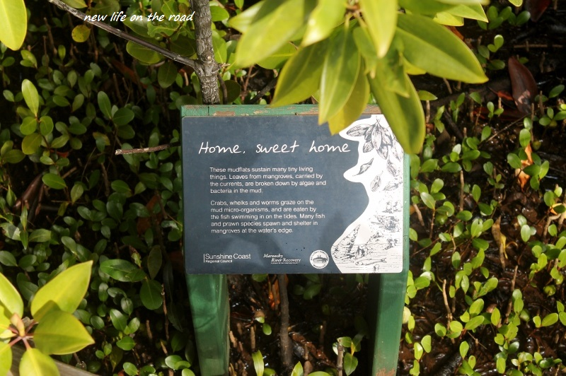 Information about the wildlife homes