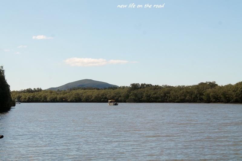 Maroochydore River
