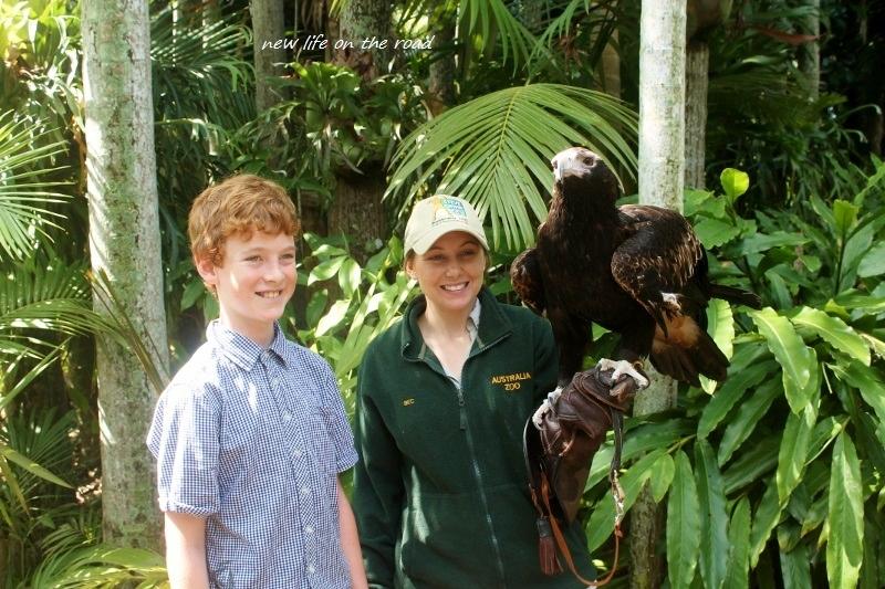 Kyle at Australia Zoo