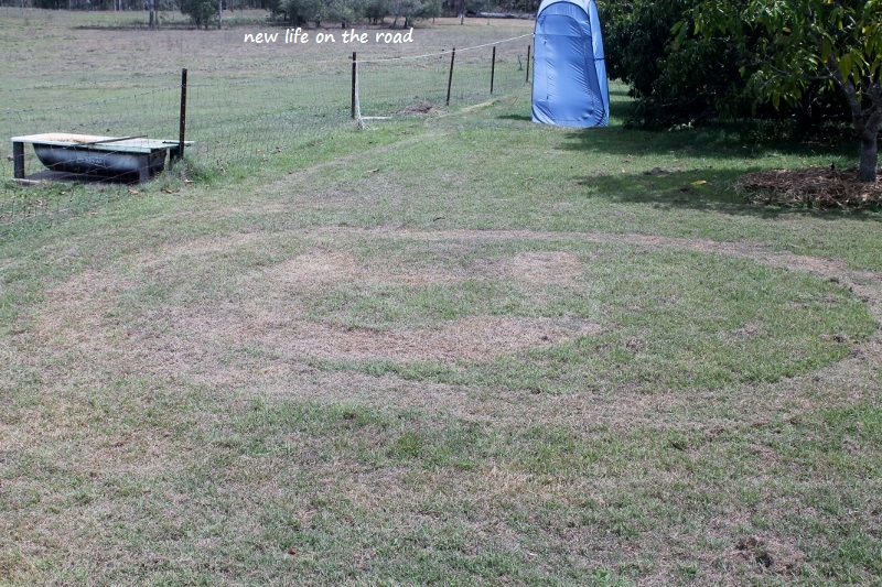Smiley Face on the Grass