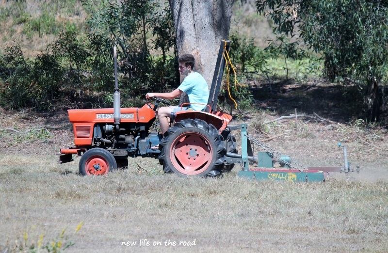 Nicholas Slashing the Weeds in the Paddock