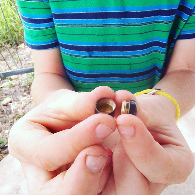 Kyle found this cache in Bundaberg
