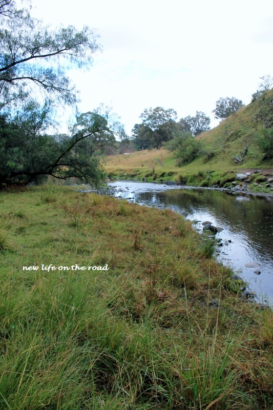 Creek at Moonan Cottage