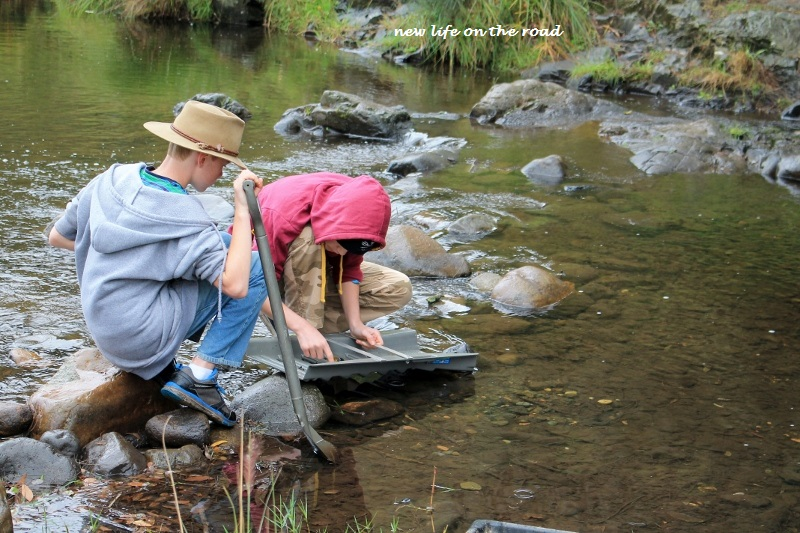 Gold Panning In the Creek