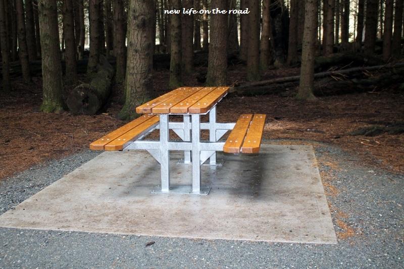 Picnic Table at Barrington Tops